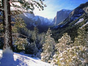Йосемити зимой